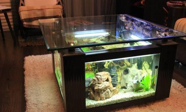 Бизнес по производству аквариумов